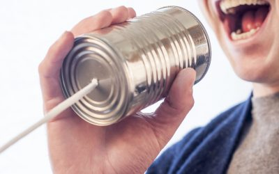 What is the Voice of the Customer?